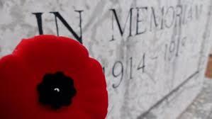 poppy in memory
